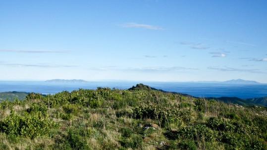 du Cap Corse
