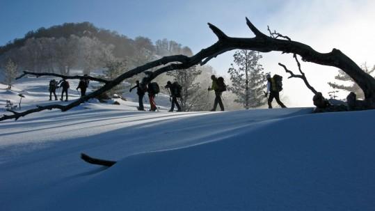 Randonnées en raquettes à neige