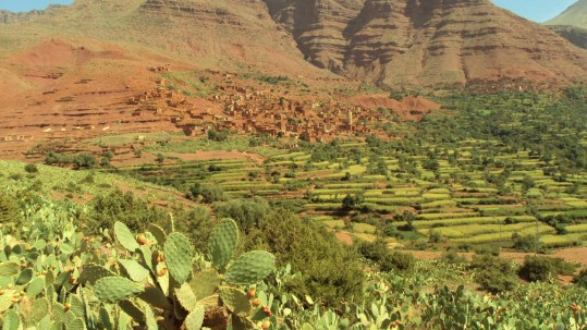 la vallée de l Ourika
