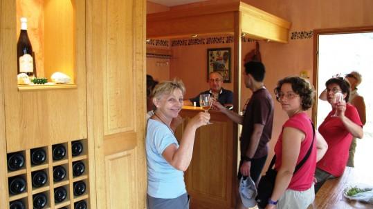 Degustation de vins du Cap Corse et du vignoble de Patrimoniu