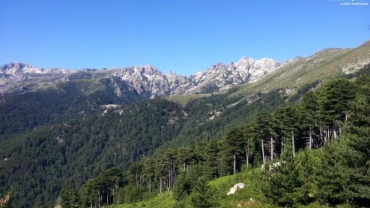 [GR20 Sud] Entre Vizzavona et Capannelle