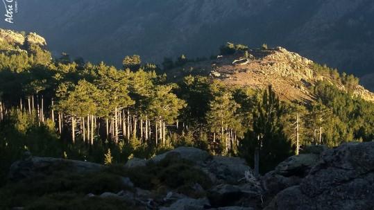 Randonnées en Corse