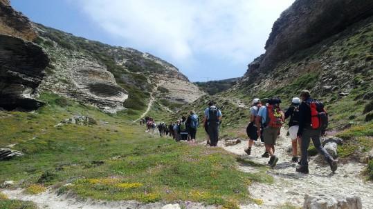Découverte de la Corse du Sud - Bonifacio