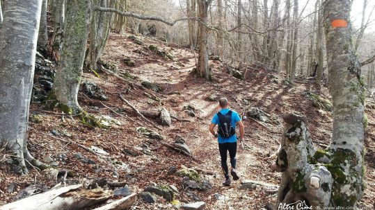 [Trail Corse] Castagniccia
