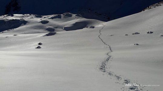[Raquettes à neige Belledonne] Aucune autre trace humaine à l'horizon !