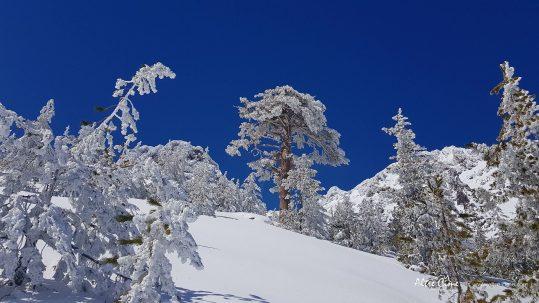[GR20 Nord] Ciel d'azur et neige immaculée